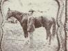 confederate-horse.jpg