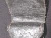 painted-canvas-cap-box3.jpg