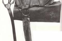 RE-Lees-Texas-saddle