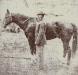 confederate-horse2.jpg