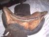 ebay-jenifer-saddle2.jpg